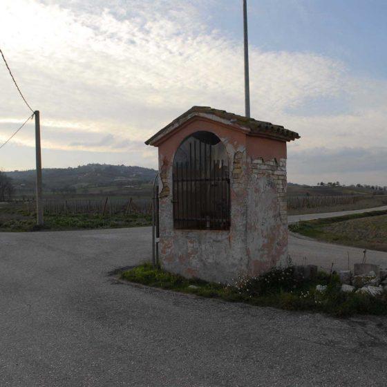 Montefalco - Polzella [MON025]