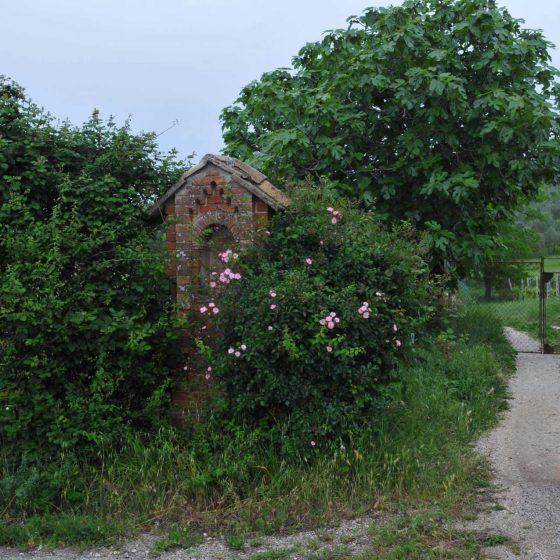 Montefalco - Cerrete, strada per Casale [MON061]