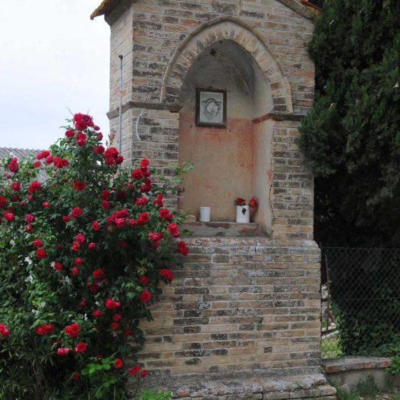 Montefalco - Rignano [MON068]