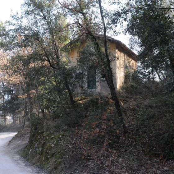 Spoleto - Spoleto, Colle Ciciano (o Luciano) «Madonna dell'oliva» [SPO034]