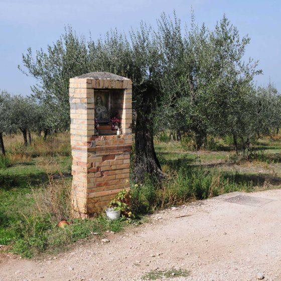 Spoleto - Santa Maria di Reggiano [SPO151]