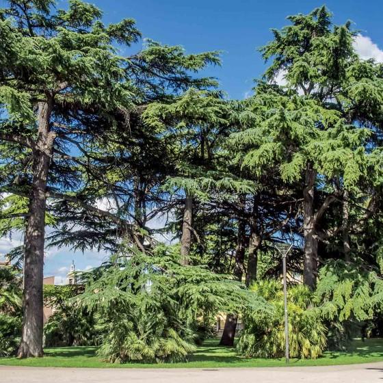 Foligno, Parco dei Canapè