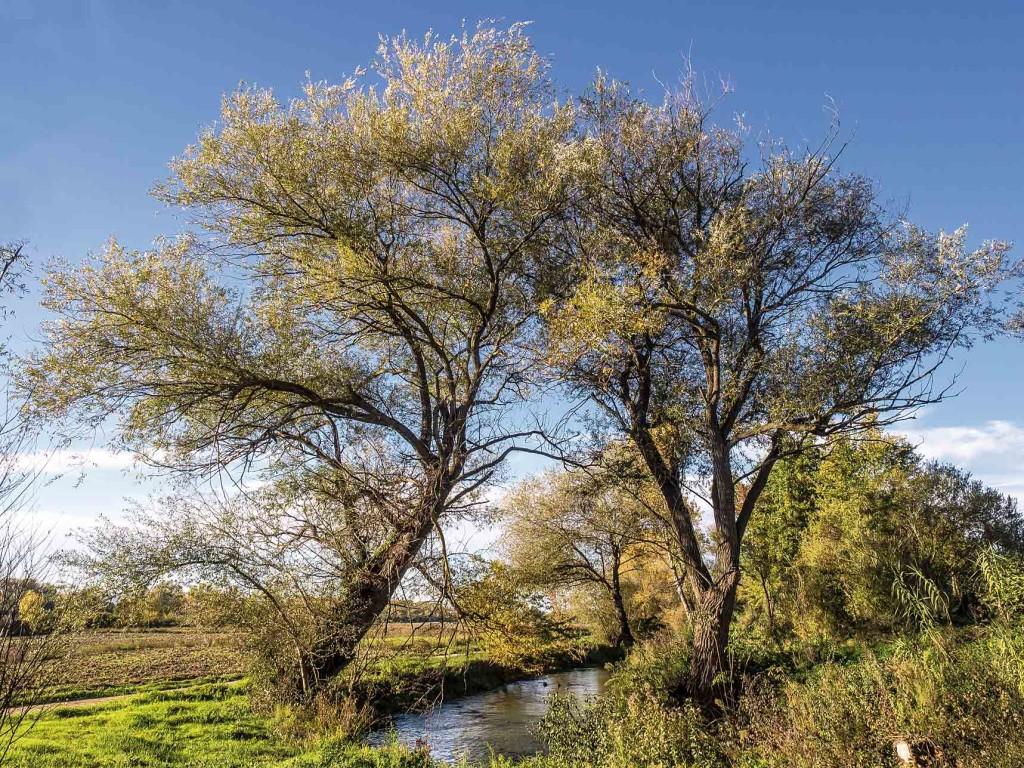 Salice – Trevi, Pietrarossa, fiume Clitunno
