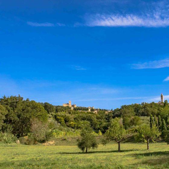 Assisi vista da San Masseo