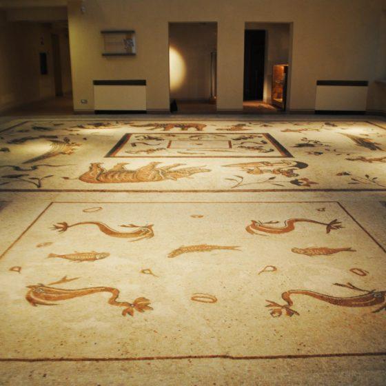 Cannara, Collemancio, Urvinum Hortense, mosaico delle terme