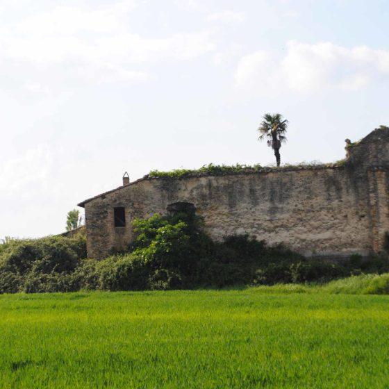 San Crispolto