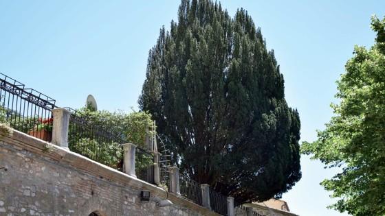 Tasso - Assisi, via Borgo Aretino