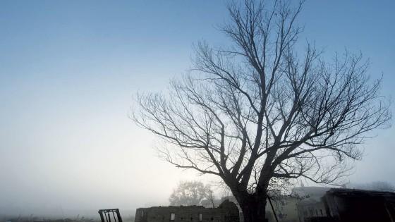 Pioppo - Montefalco, Il Piano