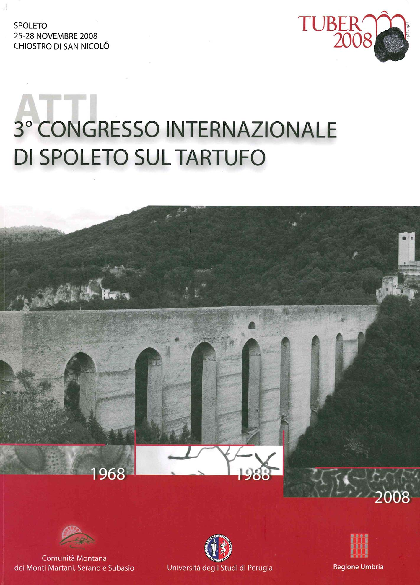 Grafica: Michelangelo Spadoni - Spoleto