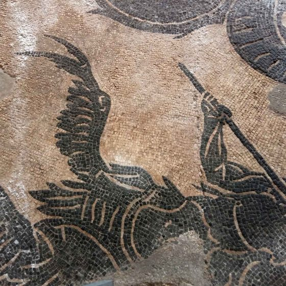 Bevagna, terme romane, mosaici