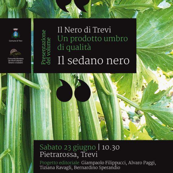 Cartolina presentazione 'IL NERO DI TREVI'