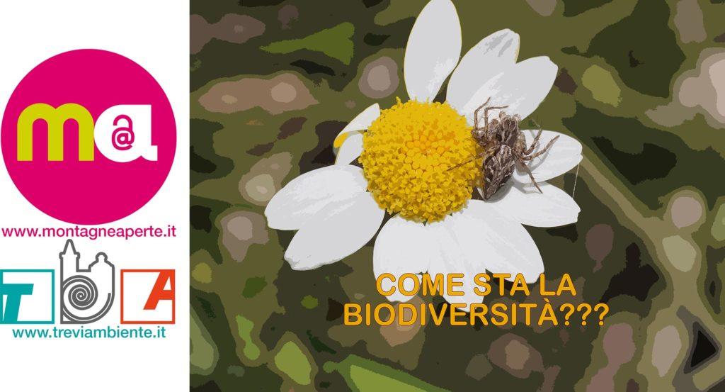 Come sta la biodiversità?