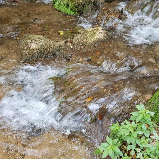 Didattica ambientale a Pale con l'Oratorio dei Santi Angeli Custodi di Trevi - Santa Maria in Valle