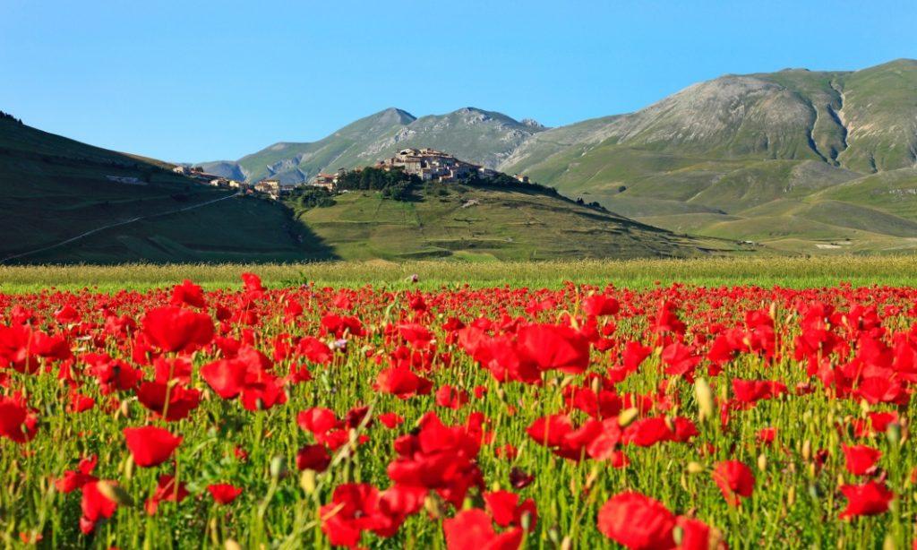 Parco dei Monti Sibillini