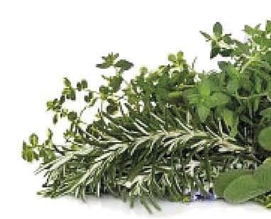 Parliamo di erbe. Botanica, alimentazione, medicina, folklore