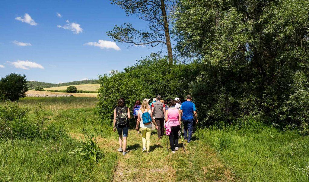 Parco di Colfiorito, l'escursione intorno alla palude, domenica 18 giugno 2017, Festa dei Boschi