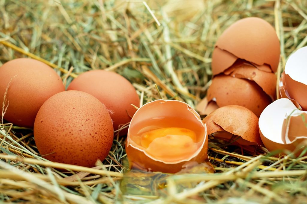 Eggs, uova, photo via pixabay, CC0 Creative Commons